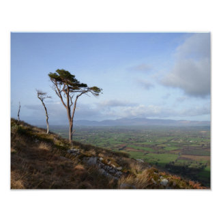 Killarney, Ireland Countryside Poster