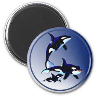 Killer Whale Family Magnets
