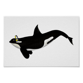 Killer Whale Listening To music Yellow Headphones Poster