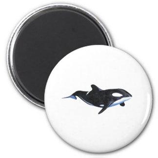 Killer Whale Fridge Magnets