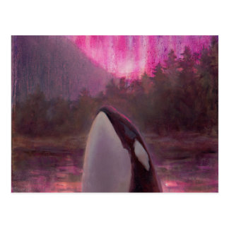 Killer Whale Orca and Pink/Magenta Northern Lights Postcard