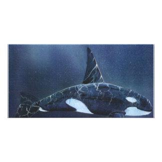 Killer Whale Photo Greeting Card