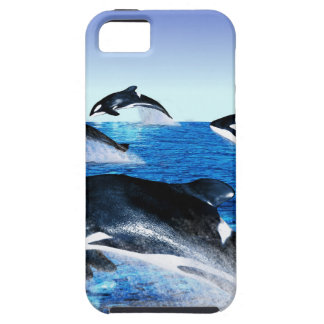 Killer Whale Pod Tough iPhone 5 Case