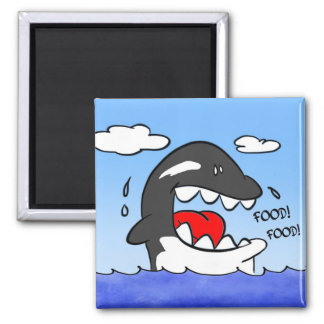 killer whale square magnet
