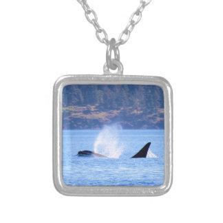 Killer Whale Square Pendant Necklace