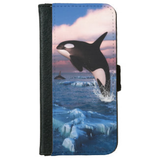 Killer Whales In The Arctic Ocean iPhone 6 Wallet Case