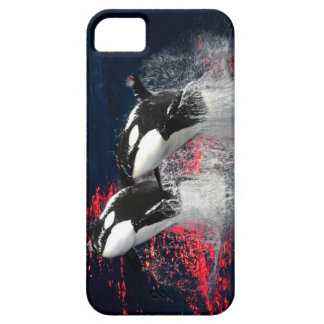 Killer Whales iPhone 5 Cover