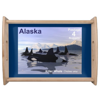 Killer Whales Food Trays