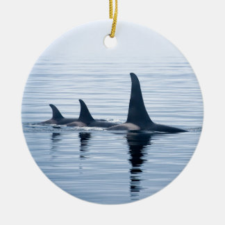 Killerwhale of Vancouver Island Christmas Ornament