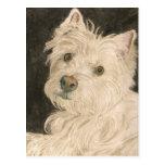 Kiltie the West Highland White Terrier Postcard
