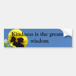 Kindness Bumper Sticker Car Bumper Sticker