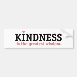 Kindness Wisdom Bumper Sticker