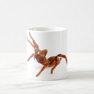 King Baboon Tarantula. Basic White Mug
