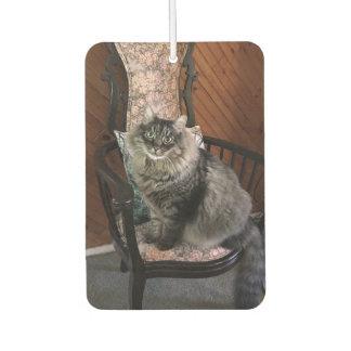 King Cat Kimber Car Air Freshener