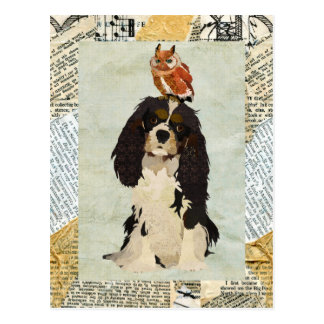 King Cavalier & Owl Postcard