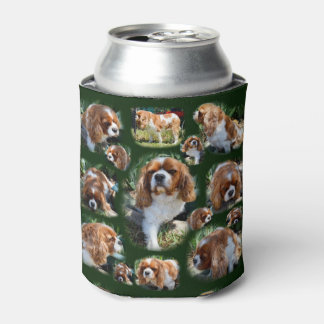 King Charles Cavalier Dog Collarge, Can Cooler