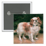 King Charles Spaniel, 1907 Buttons