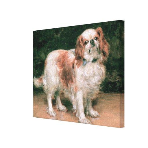 King Charles Spaniel, 1907 Canvas Print
