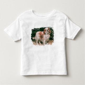 King Charles Spaniel, 1907 T Shirts