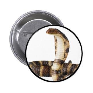"""King Cobra 1"" Pinback Buttons"