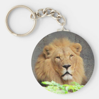 King Lion Mane Man of the Pride Basic Round Button Key Ring