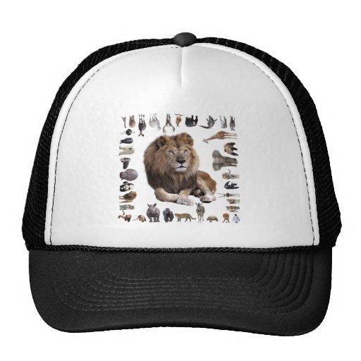 King of hundred animals trucker hat