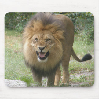King of the Jungle Mouse Pad