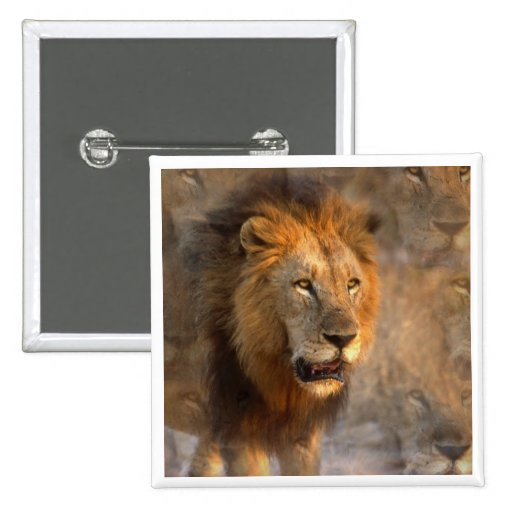 King of the Jungle Square Button