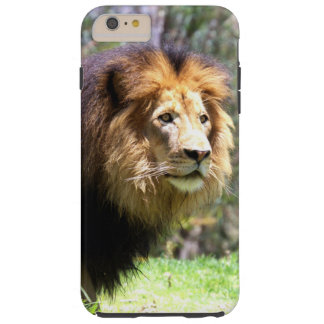 King of the Jungle Tough iPhone 6 Plus Case