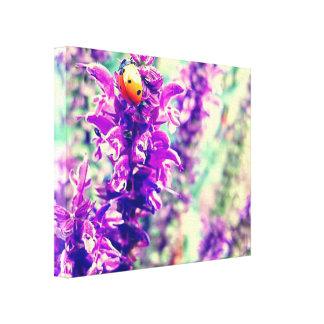 King of the Mountain Ladybug Canvas Print