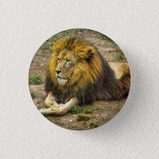 King of the Zoo Button