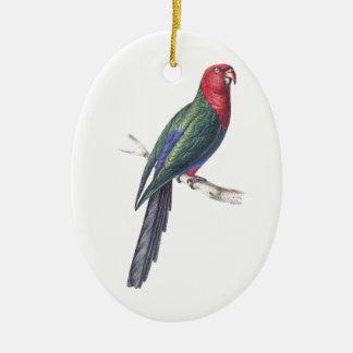 King Parakeet Ceramic Oval Decoration