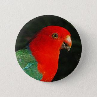 King Parrot 6 Cm Round Badge