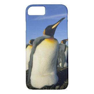 King Penguin, (Aptenodytes patagonicus), 2 iPhone 8/7 Case