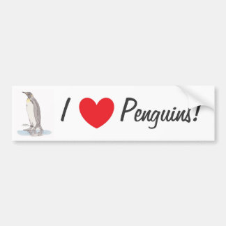 King Penguin Bumper Sticker