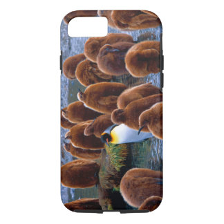King Penguin Chicks iPhone 7 iPhone 7 Case