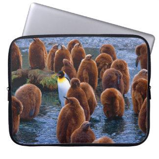 King Penguin Chicks - laptop case