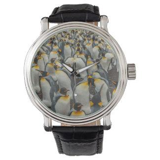 King penguin colony, Falklands Wristwatches