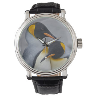 King Penguin Duet Watch