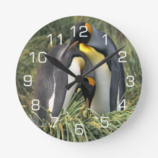 King Penguin Lovers Round Clock