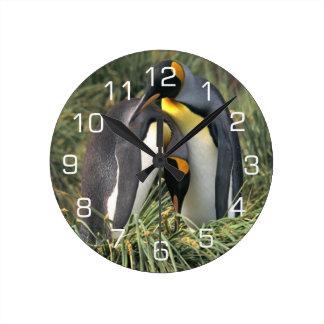 King Penguin Lovers Wall Clocks