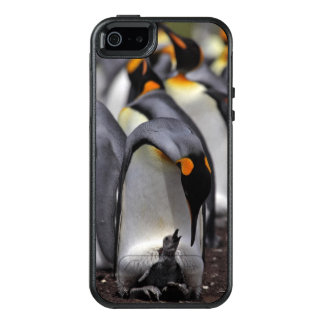 King penguin with chick OtterBox iPhone 5/5s/SE case