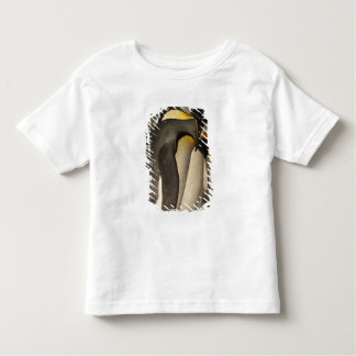 King Penguins (Aptenodytes p. patagonica) Toddler T-Shirt
