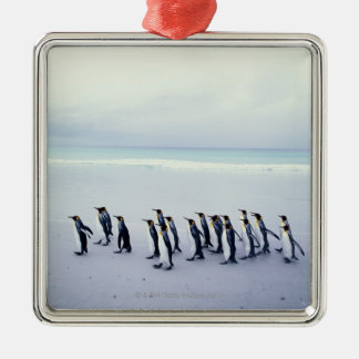 King penguins (Aptenodytes patagonicus) Silver-Colored Square Decoration
