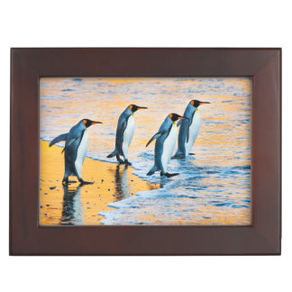 King Penguins at Sunrise Keepsake Box