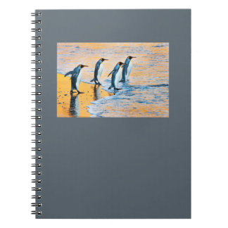 King Penguins at Sunrise notepad Spiral Note Books