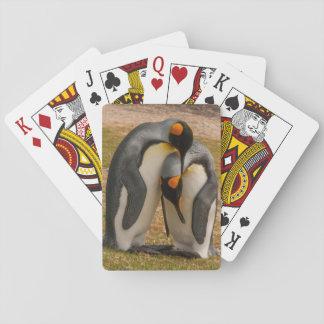 King penguins caressing, Falkland Playing Cards