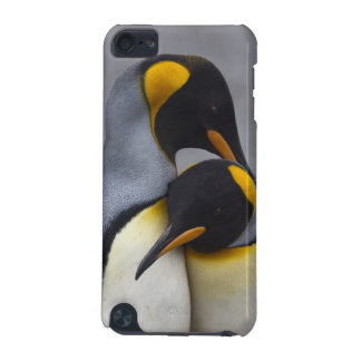 King Penguins in Love iPod Touch Speck Case iPod Touch (5th Generation) Covers