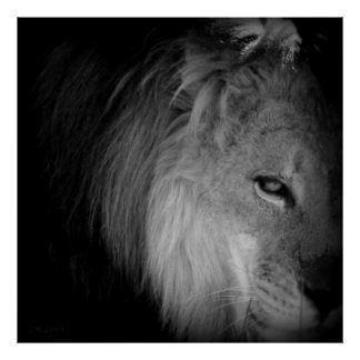 King Pride Print
