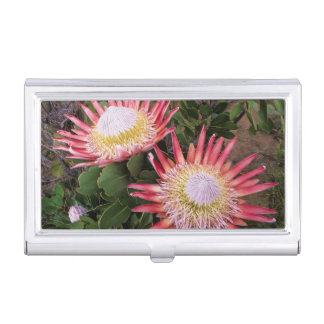 King Protea (Protea Cynaroides), Helderberg Business Card Holder
